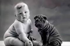 Tale il cane tale il padrone...