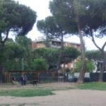Area Cani 2
