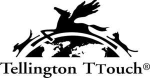 logo_ttouch