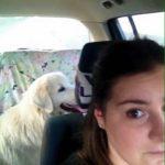 Balbo in auto